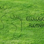 Tips on How to Reduce Ecological Footprints