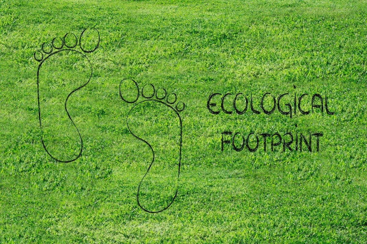 Tips on How to Reduce Ecological Footprint