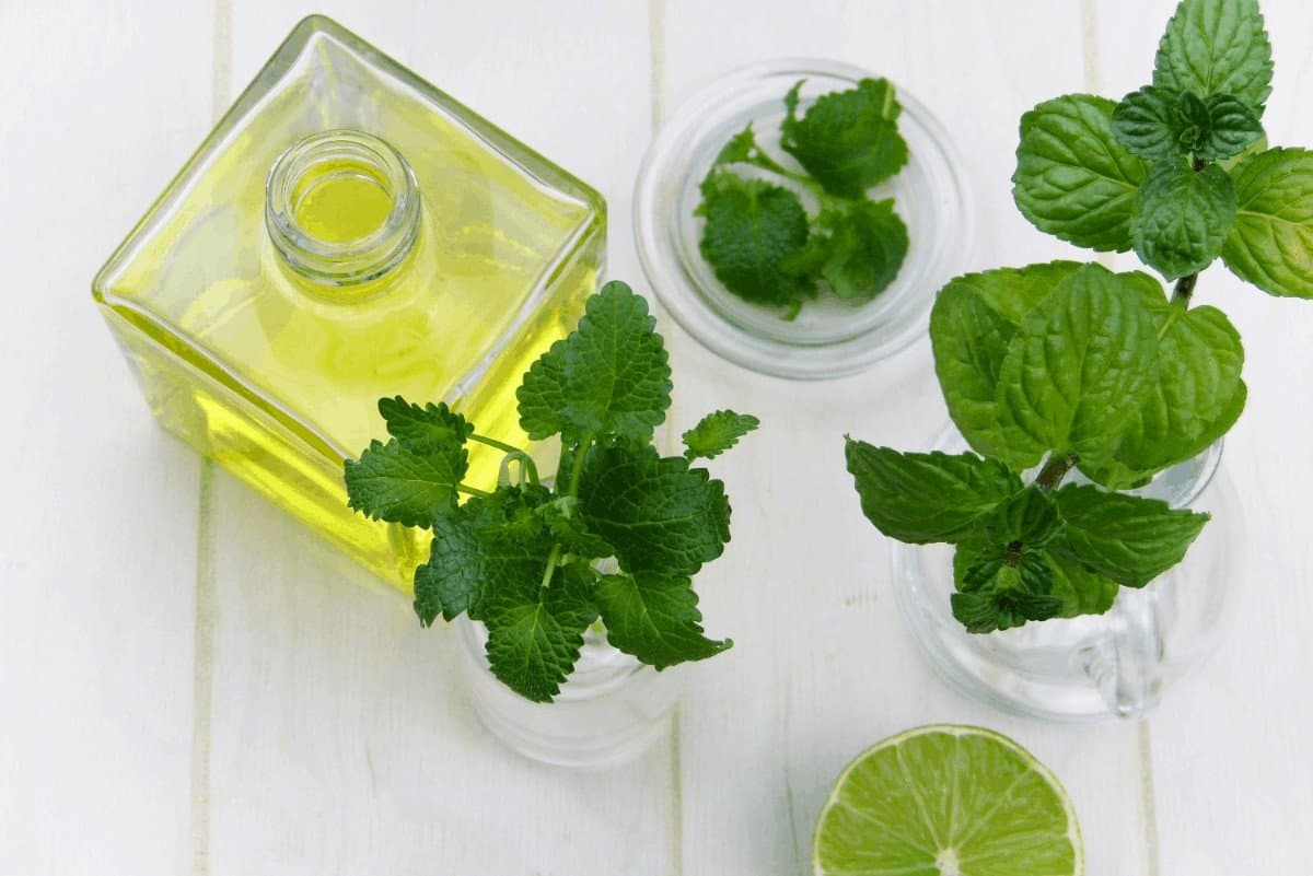The Best Essential Oils to Help With Dry Nose